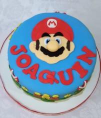 Mario Bross (5)