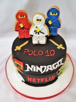 Torta Ninja Go Netflix (7)